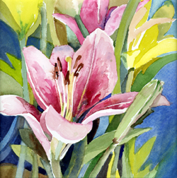 Pink and Yellow Lilies