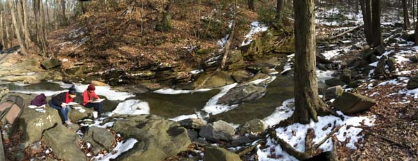 Along Four Mile Run at Long Branch Nature Center